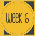 week-6